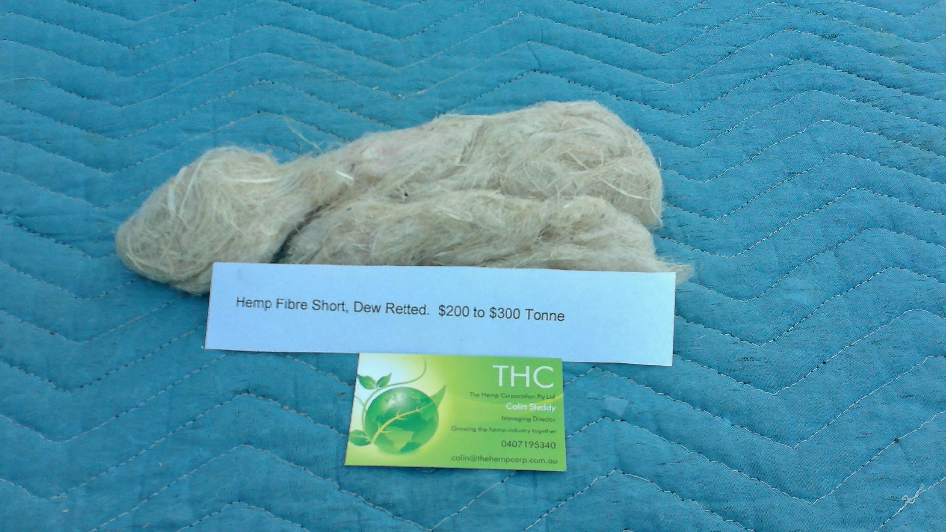 Hemp fibre short dew retted